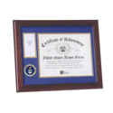 Air Force Medallion Award Frame, ALF59024