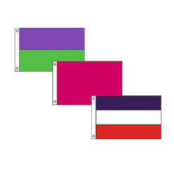 Assorted Color Flag, DFLAG58ASST