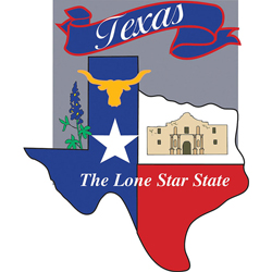 Texas Lone Star State Banner, EE10689