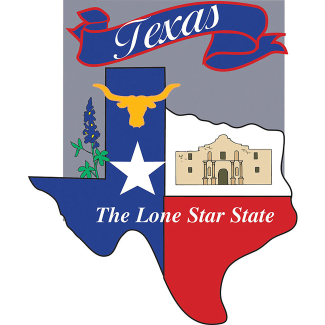 Texas Lone Star State Banner