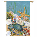 Nautical Seashells Banner, EE13A3012