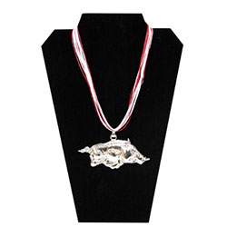 Arkansas Razorbacks Medallion Necklace, J34919