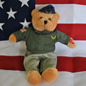 American Heroes Air Force Bear, 11 inch, PBCIG0616