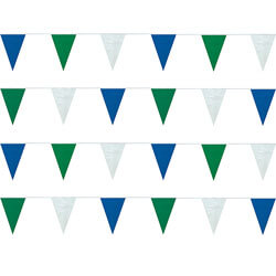 Blue, Green and White Heavy Duty String Pennants, PENNSP899BGW