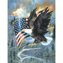 American Eagle Puzzle, SOICL59012