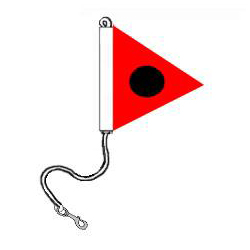 Nylon Snap Ring Battle E Pennant, FBPP0000009671