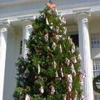 Patriotic Tree at Alabama State Capitol