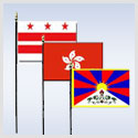 City & District Flags - Miniature