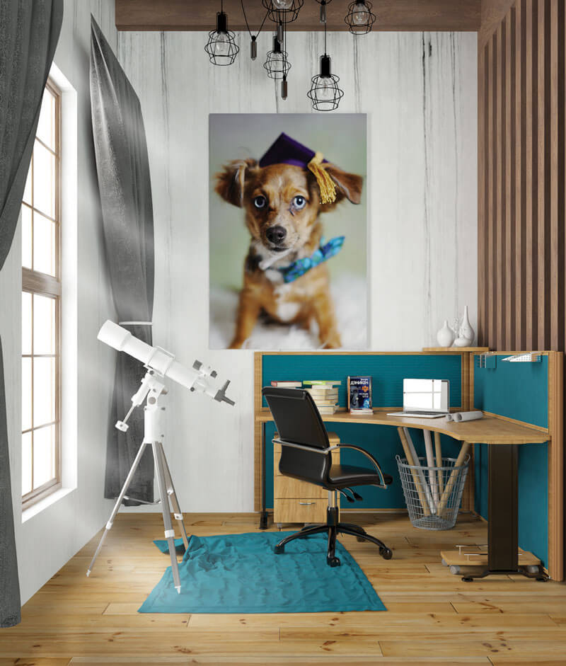 A cute dog print on a wall
