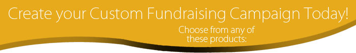 create your custom fundraiser
