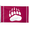 Montana College & University Flags & Banners