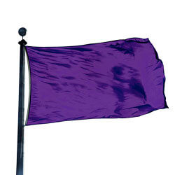 Pansy Color Flag, DFLAGNY23PA