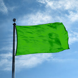 Scarab Green Color Flag, DFLAGNY1218SG