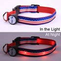Stars and Stripes Flag Lighted Dog Collar, DOGC1521FLAG