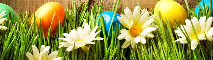 Decorate your egg hunt with our Easter Decorations.