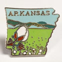 Arkansas Cloisonne Lapel Pin, GPIN9930AR
