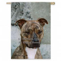 American Pit Bull Brindle Photo Banner