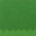 Scarab Green Nylon Fabric, FBPP0000013711