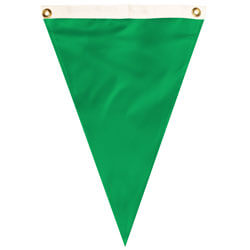 Nylon Bright Green Single Pennant, FBPP0000012057