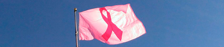 FlagandBanner.com's pink ribbon flag flying on our flagpole.