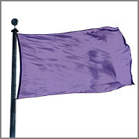 Color Flags with Purples & Pinks