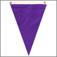 Single Pennants with Purples & Pinks