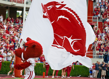 Arkansas Razorbacks Spirit Flag