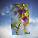 Hummingbird and Fuchsias House Banner, TOL102091H